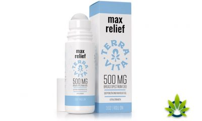 New TerraVita CBD-Infused Max Relief Pain Balm Roll-On with Menthol Launches