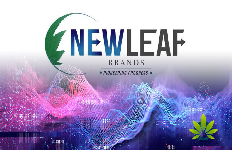 NewLeaf-Brands-Wholly-Owned-Subsidiary-We-Are-Kured-LLC-Announces-100-Plant-Based-CBD-Oil-Formulation