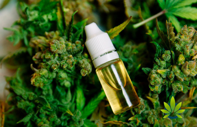 Official-CBD-Oil-Warning-Released-by-State-Officials-in-Mississippi