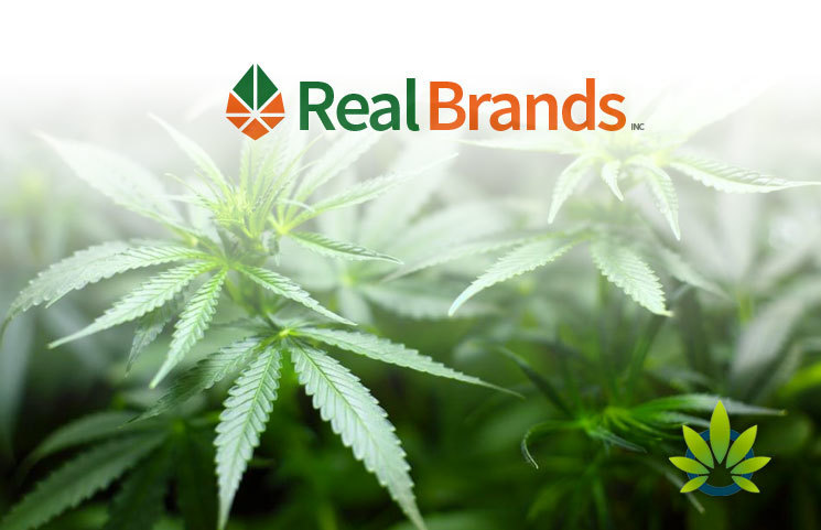Real-Brands-RLBD-Acquires-Integrative-Medicine-CBD-Formulas