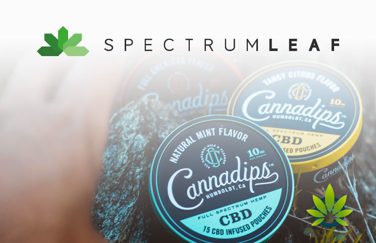 SpectrumLeaf Announces Release of Cannadips CBD Pouches in Europe