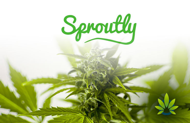 Sproutly Obtains Health Canada Flower Sales License Leading to Caliber Premium Cannabis Brand