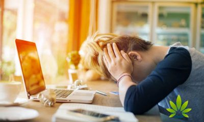 The-Stats-on-Undiagnosed-Anxiety-Disorder-Among-Americans