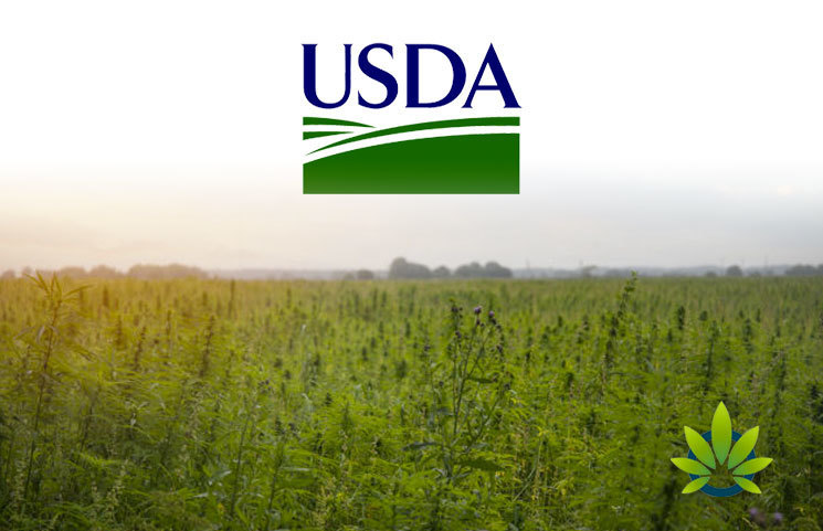 USDA Gives $1 Million Grant to Purdue University for Organic Hemp Production Research