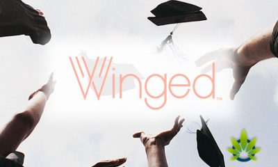 Women-Focused CBD Company Winged Donates $25K to MOSTe for Scholarships