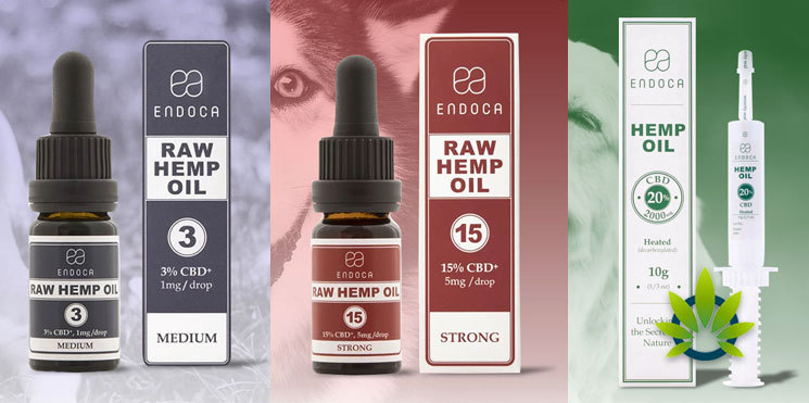 endoca pet hemp oil