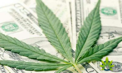 A Look at Illinois House Bill HB 3953 on Cannabis Banking and Credit Union Act