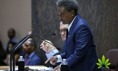 Chicago Mayor Lori Lightfoot Introduces New Guidelines for Marijuana Fines
