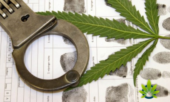 Co-Founder of Cirque de Soleil Guy Laliberté Faces Cannabis Charges