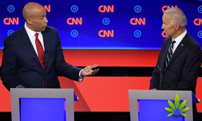 Cory Booker Critical of Joe Biden's Opposition of Marijuana Legalization During Debate