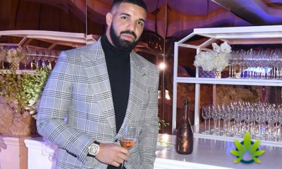 Drakes-New-Project-More-Life-Growth-Might-Be-A-Venture-Into-The-Promising-Cannabis-Industry