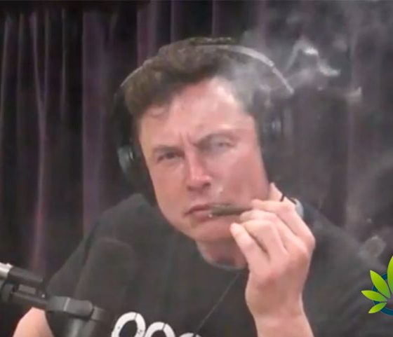 """Elon Musk Issues Apology to SpaceX Employees: It Was """"Not Wise"""" to Smoke Weed with Joe Rogan"""