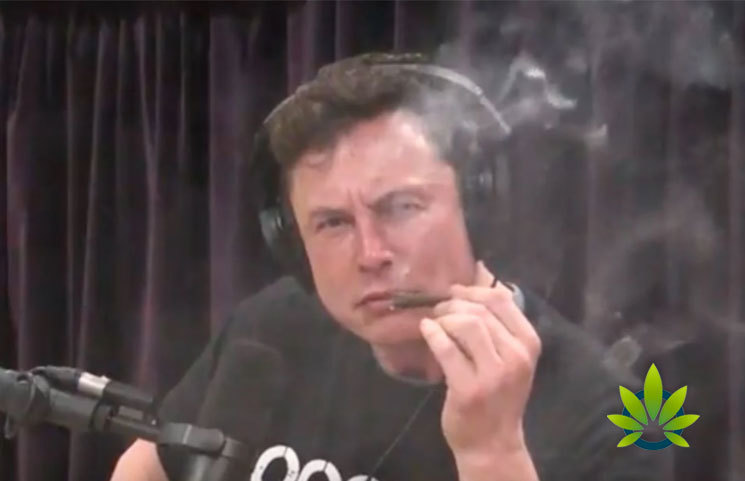 "Elon Musk Issues Apology to SpaceX Employees: It Was ""Not Wise"" to Smoke Weed with Joe Rogan"