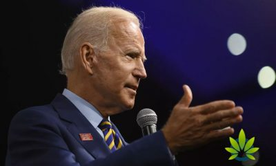 "Former VP, 2020 Presidential Hopeful Joe Biden Refers to Marijuana as a ""Gateway Drug"""