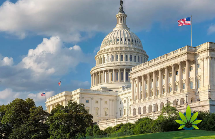 Lobbyists Push to Legalize Marijuana Sales and Regulate the Market in DC