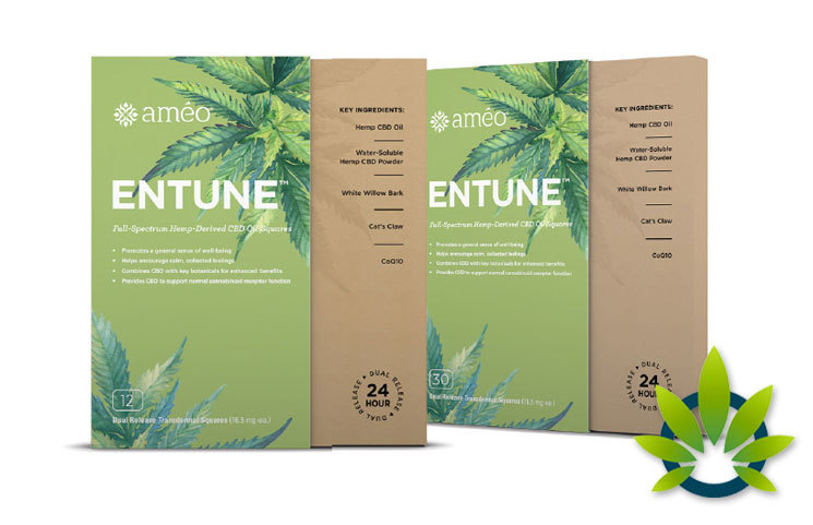 Ameo Entune Patches By Health Real Solutions: New Hemp CBD Oil Squares