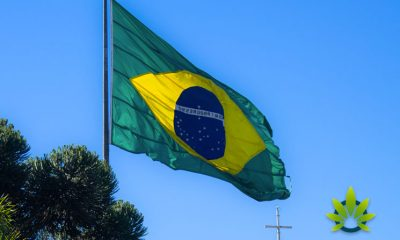 Brazil Makes Headway on Medical Marijuana Product Roll-Out Despite Blocking Cannabis Growing
