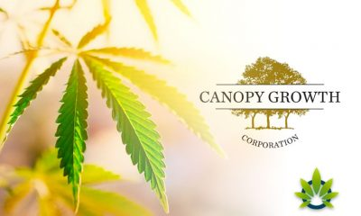 Canopy Growth Launches Its First & Free CBD Brand, the First in the US Market