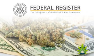 Federal Register New Rule on Employment at Credit Unions for Individuals with Drug Convictions