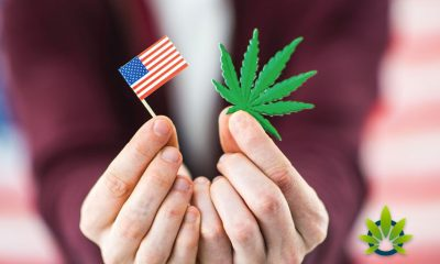 Federal Regulators Address Banking for Hemp-Related Businesses