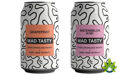 MAD TASTY Hemp Sparkling Water Launches by OneRepublic's Ryan Tedder