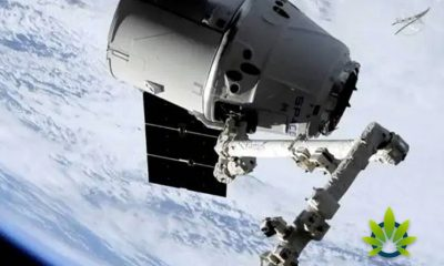 SpaceX is Taking Cannabis to the International Space Station via the Dragon Capsule