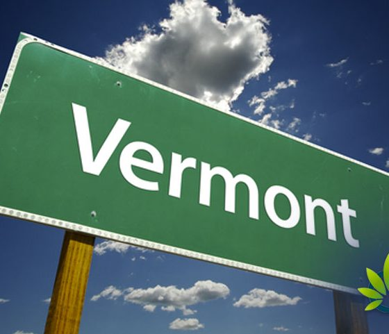 Vermont Official Comments on Marijuana Sales, Advocates Legality of Recreational Commerce