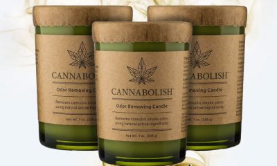 Are Cannabolish Odor Removing Candles the Ultimate Way to Neutralize Cannabis Smells?