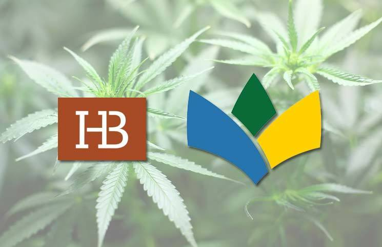 Harris Bricken, UCLA CannaClub Partner to Address Legality of Cannabis Industry