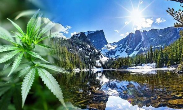 Where is Colorado at for Cannabis and Crypto Company State Banking Services?