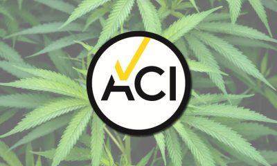ACI Cannabinoid Industry Authority to Develop Standardized CBD Testing in UK