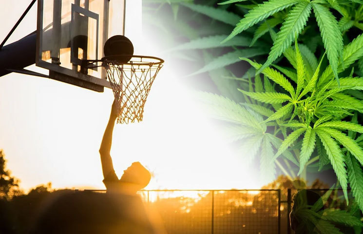 How Safely Can CBD Be Used in Sports Nutrition for Professional Athletes?