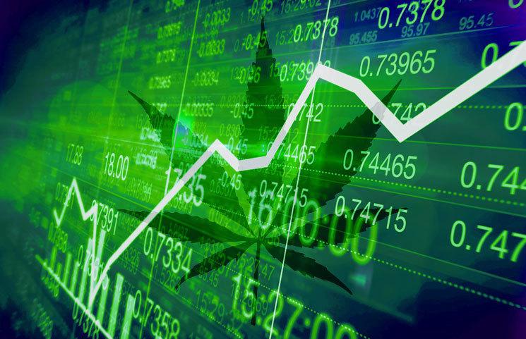 Marijuana Stocks Surge After Impressive Results from Aurora Cannabis and Curaleaf
