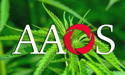 New AAOS Study Reveals Cannabis Use for Chronic Musculoskeletal Pain is Rising