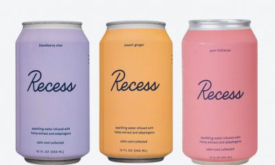 Recess Hemp-Infused Beverage Brand Debuts Online Wholesale Product Platform