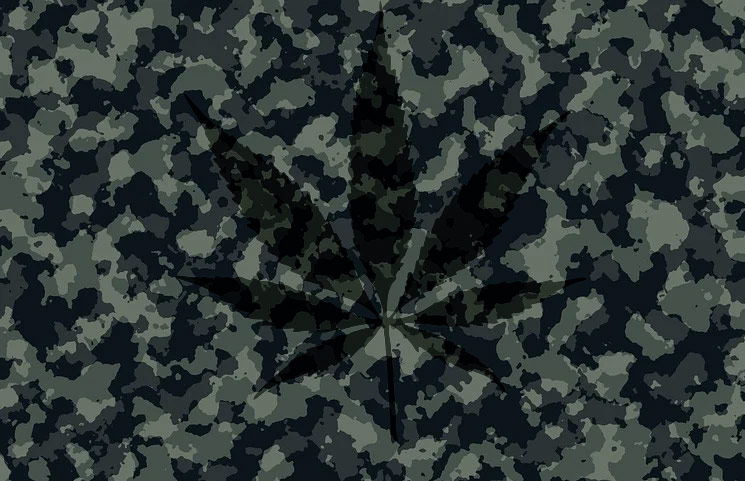 New Hemp CBD Military Service Members Memo Gets Released with Usage Updates
