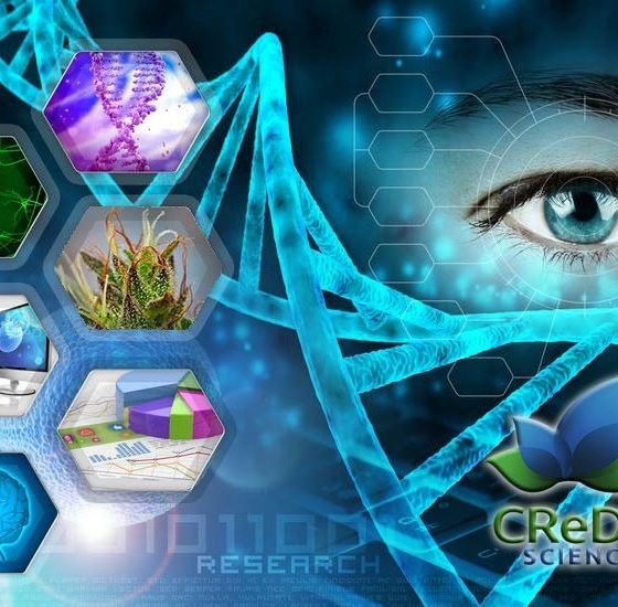credo-science-endocannabinoid-system