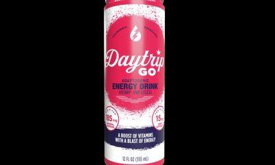 DayTrip Go Hemp-Infused CBD Energy Drink: Adaptogenic Vitamins Beverage