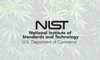 NIST Shares New Hemp and Marijuana Testing Program for Cannabis Consumers
