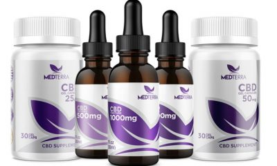 Megalabs and Medterra CBD to Penetrate the Latin American Market