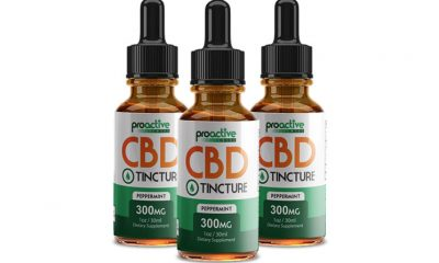 ProActive CBD: Is Pro Active CBD Oil a Premium Tincture to Try?