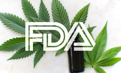 FDA Seeks Contractor to Examine CBD Oils for Toxic Contaminants
