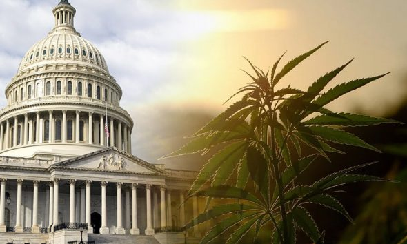 Congressional Bill on Hemp-CBD Supplementation Makes Way to the House
