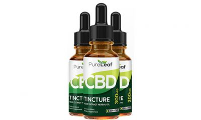 Pure Leaf CBD Oil Hemp Tincture