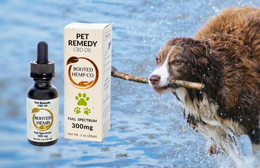 New Rooted Hemp CBD Pet Remedy Debuts for Stress and Anxiety Relief