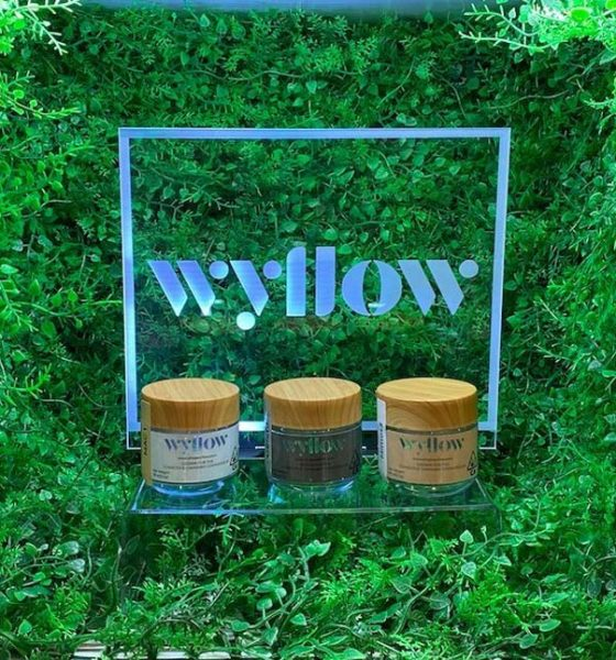 wyllow-female-centric-cannabis-brand