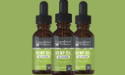 CannaBoost CBD Oil: Is Canna Boost Wellness Hemp Drops Safe?