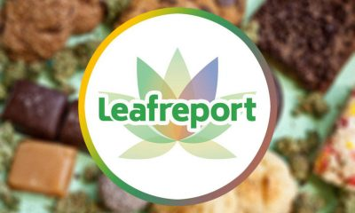 Leafreport, Canalysis Share Shocking CBD Edible Test Results