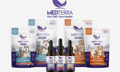 Medterra CBD Adds New CBD Chews, Tinctures for Cats and Dogs