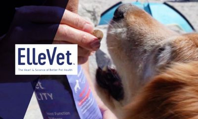 ElleVet Sciences Shares CBD+CBDA Oil On Dogs Study Results